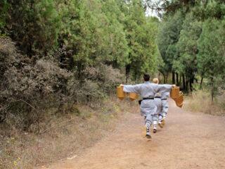 Danla antrenament la Templul Shaolin